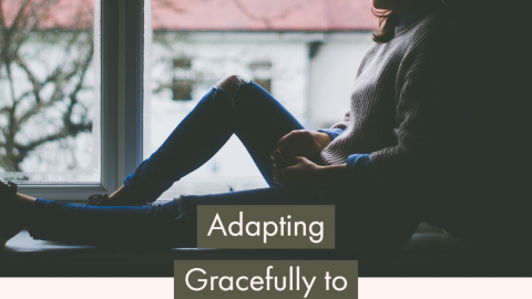 How do we adapt gracefully to this new normal?