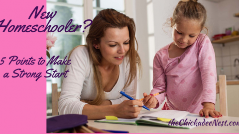 New Homeschooler? 5 Points to Make a Strong Start